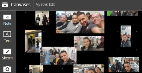 Screengrab of the photos appearing on the canvas